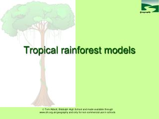 Tropical rainforest models