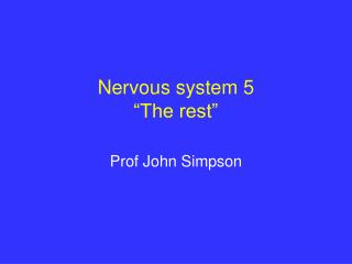 "Nervous system 5 ""The rest"""