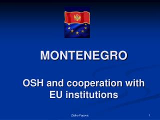 MONTENEGRO OSH and cooperation with EU institutions
