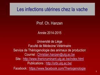 Les infections utérines chez la vache