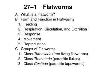 27–1	Flatworms
