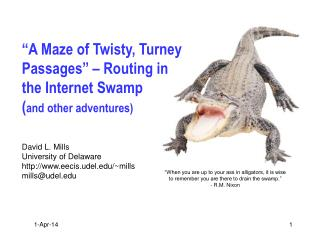 """A Maze of Twisty, Turney Passages"" – Routing in the Internet Swamp ( and other adventures)"