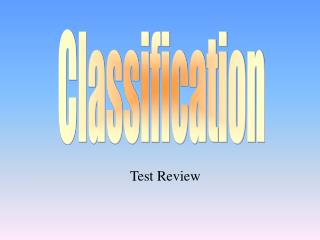 Test Review