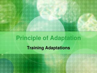 Principle of Adaptation