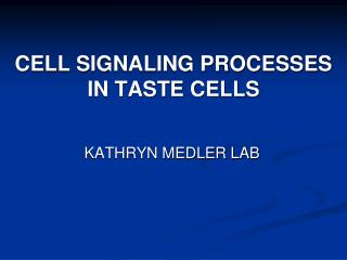 CELL SIGNALING PROCESSES IN TASTE CELLS