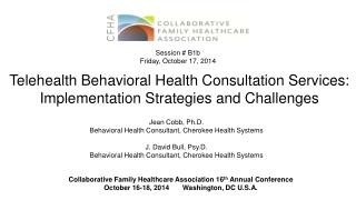 Telehealth Behavioral Health Consultation Services: Implementation Strategies and Challenges