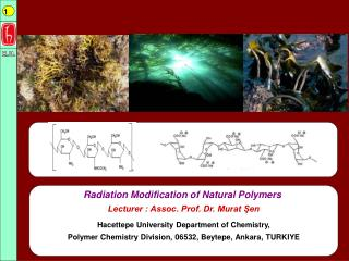 Radiation Modification of Natural Polymers Lecturer : Assoc. Prof. Dr. Murat ?en