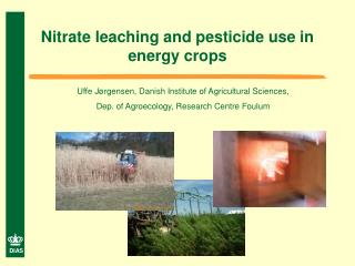 Nitrate leaching and pesticide use in energy crops