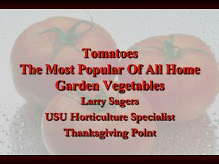 Tomatoes The Most Popular Of All Home Garden Vegetables