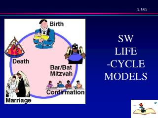 SW LIFE -CYCLE  MODELS