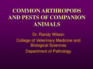 COMMON ARTHROPODS AND PESTS OF COMPANION ANIMALS