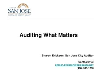 Auditing What Matters