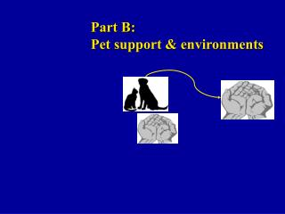 Part B: Pet support & environments