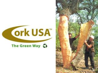 The Cork Forest