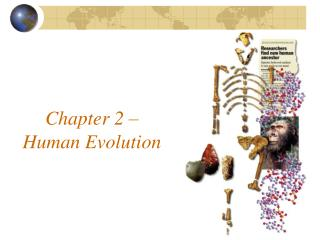 Chapter 2 – Human Evolution