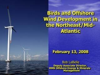 Birds and Offshore Wind Development in the Northeast/Mid-Atlantic February 13, 2008