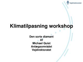 Klimatilpasning workshop
