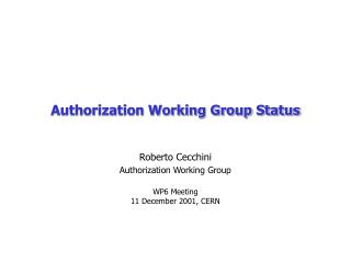 Authorization Working Group Status