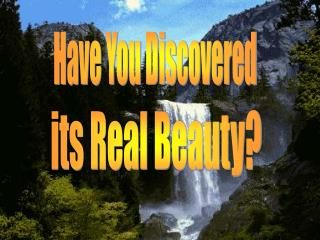Have You Discovered