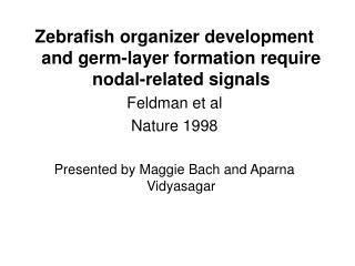 Zebrafish organizer development and germ-layer formation require nodal-related signals