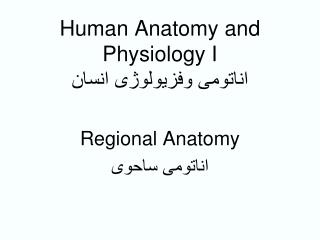 Human Anatomy and Physiology I ??????? ????????? ?????