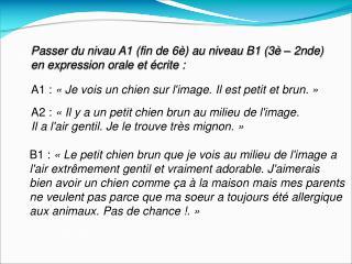 Passer du nivau A1 (fin de 6è) au niveau B1 (3è – 2nde) en expression orale et écrite :