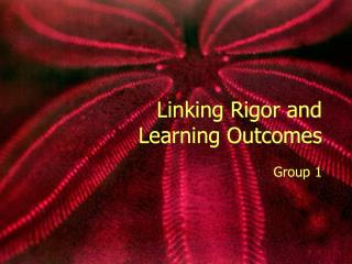 Linking Rigor and  Learning Outcomes