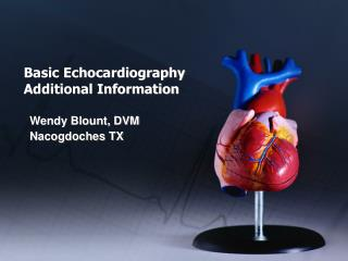 Basic Echocardiography Additional Information