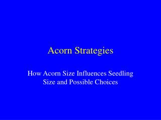 Acorn Strategies