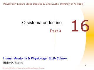O sistema endócrino Part A