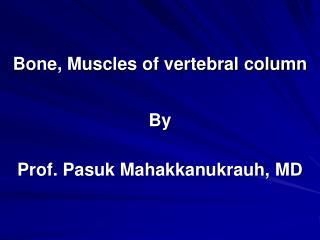 Bone, Muscles of vertebral column