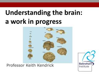 Understanding the brain:  a  work in progress