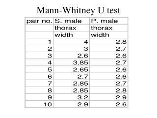 Geschlechtskrankheiten test mann