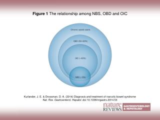 Figure 1  The relationship among NBS, OBD and OIC