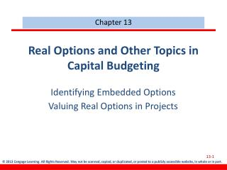 Real Options and Other Topics in Capital Budgeting