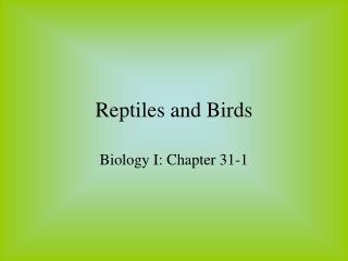 Reptiles and Birds
