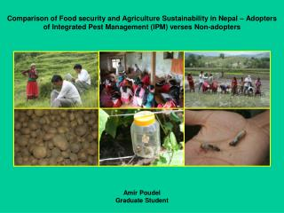 Comparison of Food security and Agriculture Sustainability in Nepal   Adopters of Integrated Pest Management IPM verses