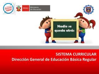 SISTEMA CURRICULAR Dirección General de Educación Básica Regular