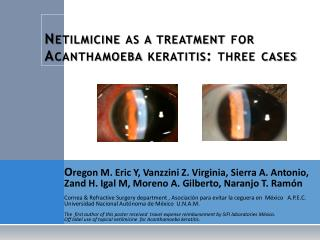 Netilmicine  as a treatment for  Acanthamoeba keratitis :  three  cases