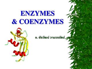 ENZYMES & COENZYMES