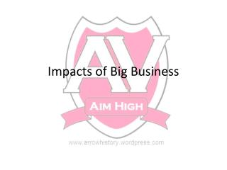 Impacts of Big Business