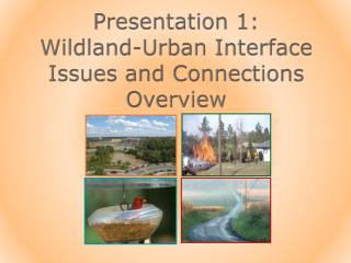 Presentation 1: Wildland -Urban Interface  Issues and Connections Overview