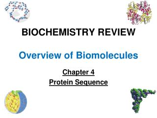 BIOCHEMISTRY REVIEW Overview of Biomolecules