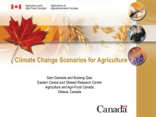 Climate Change Scenarios for Agriculture