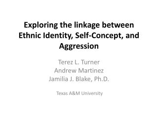 Exploring the linkage between Ethnic Identity, Self-Concept, and Aggression