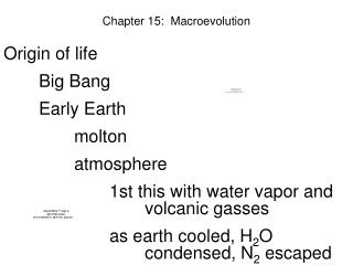 Chapter 15:  Macroevolution