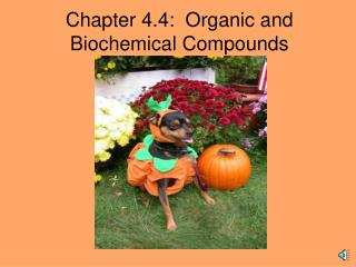 Chapter 4.4:  Organic and Biochemical Compounds