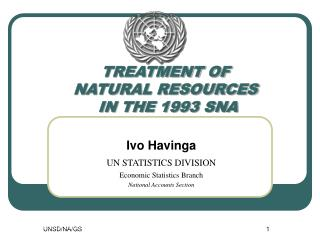 TREATMENT OF  NATURAL RESOURCES  IN THE 1993 SNA