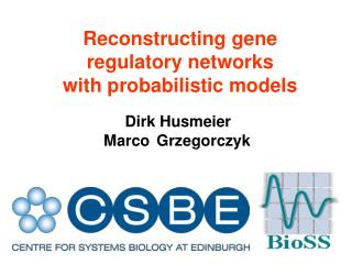 Reconstructing gene  regulatory networks with probabilistic models