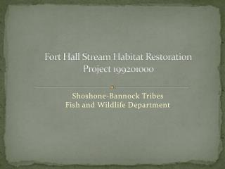 Fort Hall Stream Habitat Restoration Project 199201000